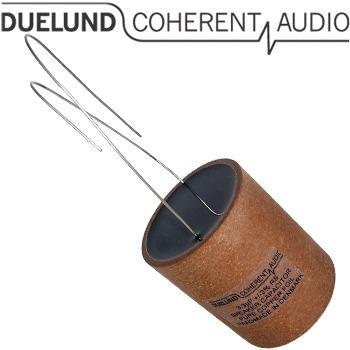 Duelund RS Loudspeaker 100Vdc capacitors