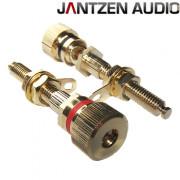 Jantzen binding posts