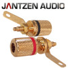 012-0160 Jantzen Binding Post M4 / 8mm Pair, Gold plated,  red / black, a pair